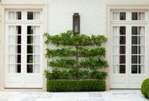 Garden Inspiration / by John Hammons