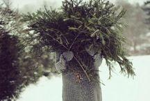 Winter / by Mandy Johnson