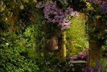 Garden Delights... / by Loralea Kirby