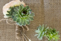 Boutonnieres  / by A Savvy Event