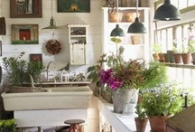HOME:::Garden sheds / by Anne Bursey