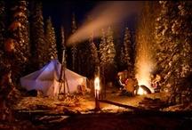 Camping / by Zumba Girl