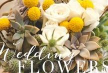 wedding flowers / by kristin