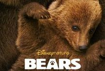 Disneynature / Disneynature's Bears is now available on Blu-ray Combo Pack and Digital HD! / by Walt Disney Studios