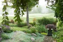 Landscaping / Casual Landscaping, to Formal Gardens. Mazes, and Labryrinths. / by Jena Kelly