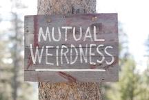 I Do  / Ideas for me and Matt's wedding! <3 / by Amanda Zinner