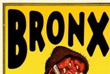 Bronx!!! / by Shane Michael