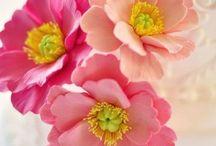 Sugar Flower Tutorial / by Vickie