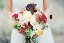 Photography Ideas / Wedding / by Sarah Vorderbrueggen