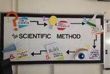 Miss Science / by Miss Hallie