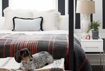 Teen / Maculine Bedroom / by Julie Loves Home