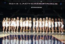 2013-2014 Lady Cats Dance Team / by Charlotte Bobcats