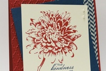 Cards - Blooming w/ Kindness SU / Blooming with Kindness set by Stampin' Up! / by Margaret Raburn
