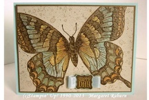Cards - Butterflies SU  / Butterflies:  stamped, punched, papercrafted!  Stampin' Up! / by Margaret Raburn