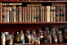 wunderkammer / magic, objects, collections. / by Diana Lempel