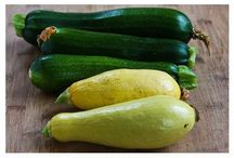 Squash / by Linda Bechtold