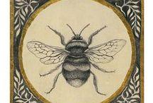 Bee  / by Georgie Bender