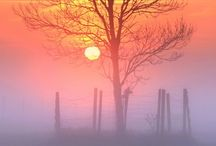 Mist / Moody, dreamy land and city scapes / by Vic (Jane Austen's World)