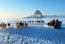 Greenland / by Igor Mamantov