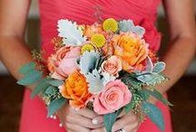 Obligatory Dream Wedding Board / by Maddy Phillips