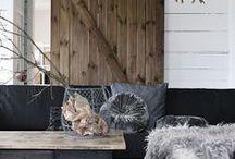 Home Decor / by Kimberley Kufaas