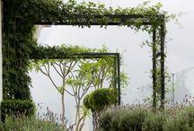 gardens / by Brenda Irwin