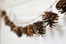 holidays: Christmas / by Lauren DeMarti
