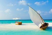 Sailboats! / by Sandy English