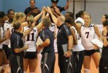 Team USA / All things Team USA and USA Volleyball / by USA Volleyball