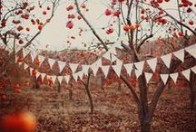 Fall / by Susty Party