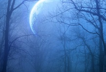 The Many Faces of the Moon / by Laura Reese Aguilar