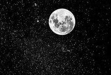 Cosmos / by Alexandra Takeda