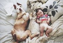 Maternity/Kids / by Tammy Swales