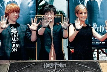 Harry Potter / by Christina Lopez