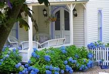 Blue Hydrangea Cottage / by Ilka Ingleton