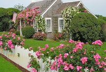 Rose Petal Cottage / by Ilka Ingleton
