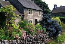 Gray Stone Manor / by Ilka Ingleton