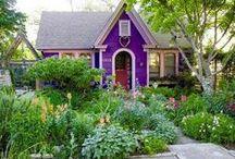 Sweet Viola Cottage / by Ilka Ingleton