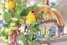 Birdsong Cottage / by Ilka Ingleton