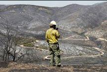 Utah Wildfires / by The Salt Lake Tribune