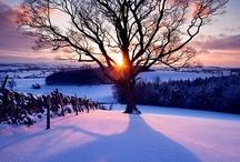 Snow / by Met Office