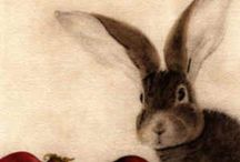 Hares / by Caroline Watts