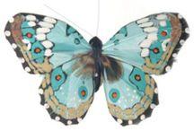 Butterflies / by Caroline Watts