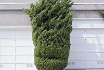 Garden Styles: Bucolic Zen / by Rochelle Walter Greayer