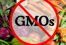 Say NO to GMOs, Fake Food & Fast Foods / by Renee Winston