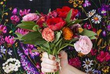 Garden Love~My Hobby / by Michelle Dickerhoof