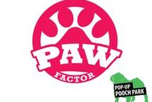 "Paw Factor - Wild Card / We have received your submissions and now it's time to vote for the Paw Factor champions. Login to Pinterest and ""Like"" your favorite dog(s) - each ""like"" counts as a vote. Voting ends on December 6th at 11:59pm (MST). The winner of each category will receive a Bark Box filled with high quality toys and homemade treats and will be included in the grand prize drawing for a year supply of Bark Box and a year of mobile pet grooming from Arizona Pet Stylist. / by My1039 Phoenix"