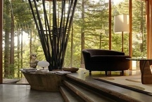 Jungle Home Shared Space / Inspiration for a shared space in a jungle retreat. / by Victoria Watts