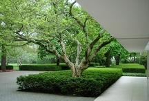 Landscape Architecture / Landscape Architecture. Design. Art. Gardening. Environment. Urban Design. Planning. Landscaping. / by Mike Faulkner
