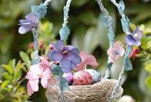 Springtime / by Cheryl Miller
